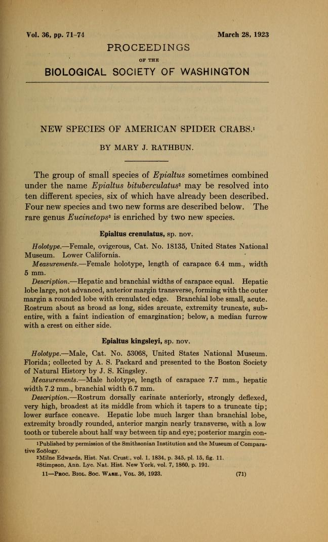 New Species of American Spider Crabs